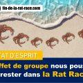 Le très pernicieux effet de groupe lorsqu'il s'agit de sortir de la Rat Race